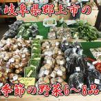 野菜セット「季節の野菜6〜8品」(郡上)(送料無料)