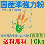 岐阜県産準強力粉(タマイズミ1等粉)10kg (送料無料)