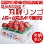 りんご【令和元年度 販売開始!】鴻巣果樹園 岐阜 飛騨りんご詰合せ ご自宅用小さなキズ有
