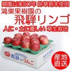 【今シーズン完売】りんご 鴻巣果樹園 岐阜 飛騨りんご詰合せ ジュースお菓子ジャム用