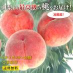 山梨県産の最高級もぎたての桃 [ご家庭用]【産地直送品】−L・9〜10玉【送料無料】