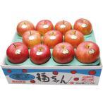 お歳暮 福ちゃん蜜入りんご M12-1 簡易包装 送料込み