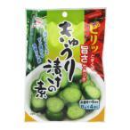 [日東食品工業] きゅうり漬けの素 8g×4袋 広島 粉末 浅漬け きゅうり