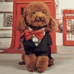 犬 タキシード 服 コスチューム  猫 ペット ハロウィン クリスマス ネクタイ フォーマル pw-015