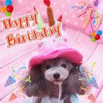 犬 服 ドッグウェア 帽子 バースデー ケーキ ハット コスチューム ペット コスプレ 小型犬 中型犬 猫 pw-05