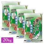 ■無洗米 令和2年産 新潟県産 こしいぶき 20kg(5kg×4袋)