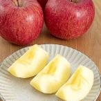 JAふくしま未来 (福島)(期間限定)りんご 特秀 5kg