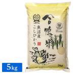 野上米穀(田中米穀) 令和2年産 合鴨栽培 新潟県 魚沼産 コシヒカリ 5kg(1袋)