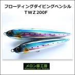 メロン屋工房 TWZ200F ダイビングペンシルフローティングMelon-ya-kobo TWZ200F  Diving Pencil