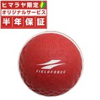 【10%OFFクーポン付き!】フィールドフォース FIELDFORCE 野球 スローイング 投球 送球 練習 ボール 練習器具 スローイングマスター FPG-5 bb