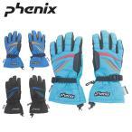 フェニックス(Phenix) スキー グローブ(ジュニア) Demonstration Boy's Gloves PS5G8GL83 【15-16 2016モデル】 防寒