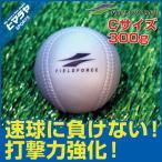 フィールドフォース FIELDFORCE 野球 トレーニングボール インパクトパワーボール Cサイズ 300g FIMP-680C