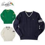 アーノルドパーマー arnold palmer ゴルフウェア メンズ ケーブルVネックセーター AP220204G01