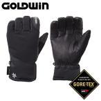 ゴールドウィン スキーグローブ ジーティーエックス グローブ GTX Glove G81803P-T K M
