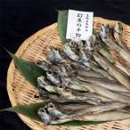 幻魚(ゲンゲ)の干物 黒部名水仕上げ