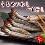 干物(単品)うるめいわし(一夜干し)(うぶき) 山陰沖日本海産