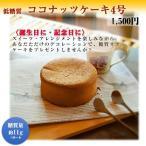 低糖質ココナッツケーキ4号(砂糖・小麦粉不使用)(人工甘味料・保存料・マーガリン不使用)(糖質制限・糖質オフ)