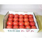 日の出トマト(小箱)2.4kg