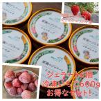 【農園オススメ】ジェラート6種&冷凍いちご セット 送料込