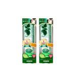 安心通常便 2本お得セット 歯磨き粉 リベルタ デンティス チューブタイプ 100g