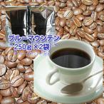 珈琲 コーヒー 福袋 送料無料 コーヒー豆 自家焙煎コーヒー「ブルーマウンテン」500g