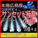 広島産 サンセット極龍めだか 卵30個 最高級 鉄仮面 みゆき 卵 メダカ ブルーダイヤ フルボディスーパーブルー幹之