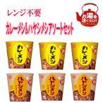 日清食品 熱湯タイプ カレーメシ ビーフ かれーらいす ハヤシメシデミグラス 2種の ごはん 12食セット 送料無料 おまけ付き