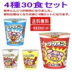 新着 スナック感覚のカップ麺 おやつカンパニー ブタメン 30個セット 関東圏送料無料
