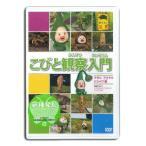 こびとづかん DVD こびと観察入門 マモリ アマクリ シシャワ 編