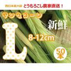 ヤングコーン 皮付き 生 国産 新鮮 50本入り 大きい お得なLサイズ 11-14cm 低農薬 おいしい ベビーコーン 西日本最大級のとうもろこし農家 送料無料