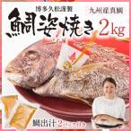 【博多久松謹製】鯛姿焼き 2kg(鯛出汁2パック付き)焼き鯛 祝い鯛