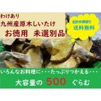メール便で送料無料!<訳あり>九州産原木椎茸・お徳用、未選別品500g