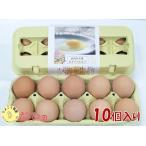 【10個入】ひよころ鶏園のたまご(純国産赤鶏『あずさ』)の有精卵