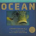 OCEAN  写真がうごく しかけ絵本 洋書