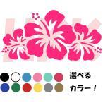 カッティングステッカー 選べる14色 Hibiscus ハイビスカス デイゴ 南国  沖縄 ハワイ アロハ umi001-003-1