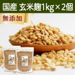 玄米麹1kg×2袋 (乾燥) 国産 乾燥 米糀 無添加 塩麹に