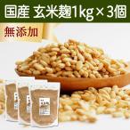玄米麹1kg×3袋 (乾燥) 国産 塩麹・糀 ワンランク上の塩麹作りに こうじ酵素 発酵食品 友麹 とも麹にも プロテアーゼ