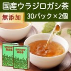 自然健康社 国産ウラジロガシ茶 7g 30パック 2個 煮出し用ティーバッグ