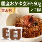 国産・お粥玄米560g×2個 国産玄米使用 湯戻し おかゆ 無添加 味付けなし マクロビオティック ダイエット 断食 自然健康社