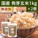発芽玄米 1kg×2個 国産 はつが ギャバ ガンマ アミノ酪酸 アミノ酸 旨味 雑穀 栄養価 無添加 ビタミンB群 自然健康社