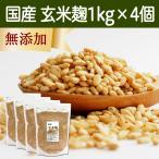 玄米麹1kg×4袋 (乾燥) 国産 塩麹・糀 ワンランク上の塩麹作りに こうじ酵素 発酵食品 友麹 とも麹にも プロテアーゼ