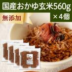 国産・お粥玄米560g×4個 国産玄米使用 湯戻し おかゆ 無添加 味付けなし マクロビオティック ダイエット 断食 自然健康社