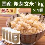 発芽玄米 1kg×4個 国産 はつが ギャバ ガンマ アミノ酪酸 アミノ酸 旨味 雑穀 栄養価 無添加 ビタミンB群 自然健康社