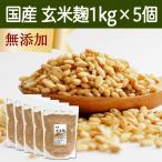 玄米麹1kg×5袋 (乾燥) 国産 塩麹・糀 ワンランク上の塩麹作りに こうじ酵素 発酵食品 友麹 とも麹にも プロテアーゼ