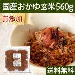 国産・お粥玄米560g 国産玄米使用 湯戻し おかゆ 無添加 味付けなし マクロビオティック ダイエット 断食 自然健康社 送料無料
