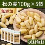 松の実100g×5個 無添加 無塩 ノンオイル 食材 新鮮 美味しい おいしい ソース作りに 料理の見栄え 食べごたえ チャック付き袋 送料無料