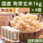 発芽玄米 1kg×4個 国産 はつが ギャバ ガンマ アミノ酪酸 アミノ酸 旨味 雑穀 栄養価 無添加 ビタミンB群 自然健康社 送料無料
