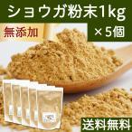 しょうが粉末1kg×5個 ショウガ 生姜 パウダー 送料無料