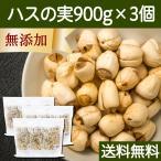 ハスの実900g×3個 (300g×9袋) 蓮の実 はすの実 アルカロイド 薬膳茶の材料にも 蓮肉 ハス肉 送料無料