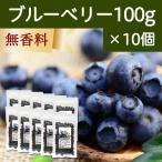 ブルーベリー100g×10個 ドライフルーツ